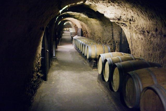 Ksara cellar